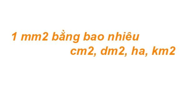 1 mm2